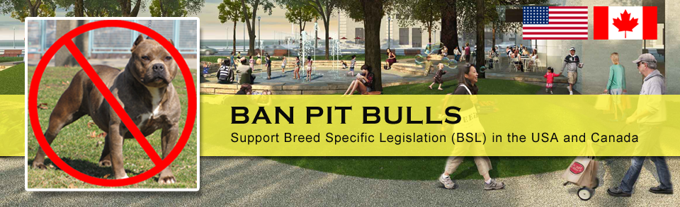 banning pit bulls Montreal's city council has voted to ban pit bulls after a fatal incident involving a dangerous dog.