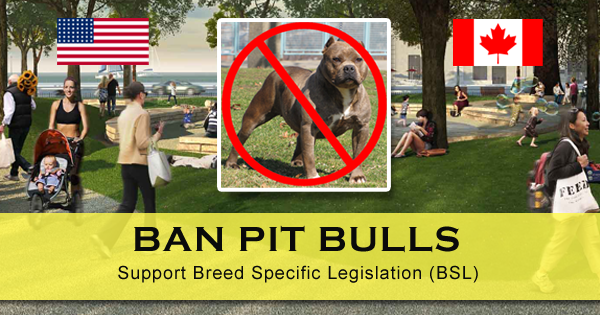 Where are pitbulls banned and restricted in the United States