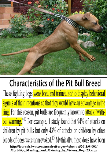 94% of pit bull attacks on children were found to be unprovoked