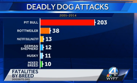 deadly-dog-attacks